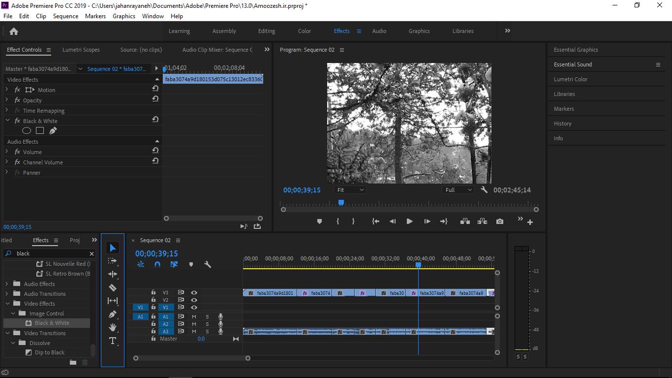 افکت Black & White در زیر منوی Video Effect گزینه Color Correction برای سیاه و سفید شدن ویدیو د رپریمیر