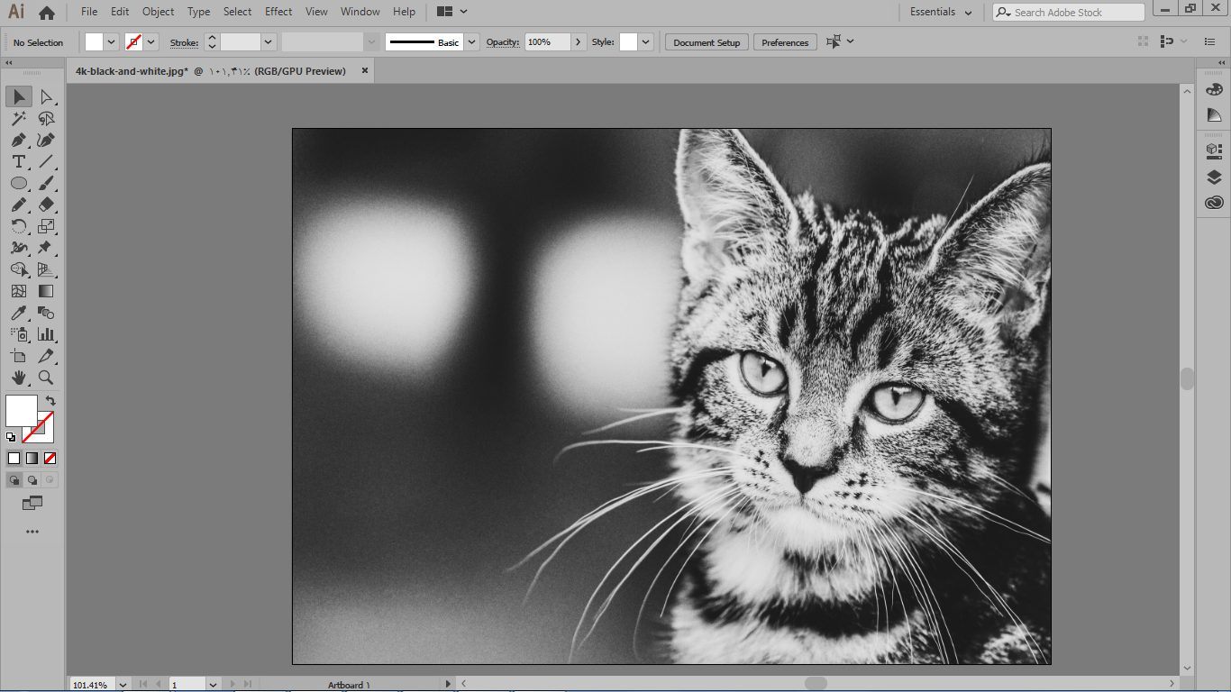 سیاه و سفید کردن با مدل رنگ grayscale د رایلوستریتور