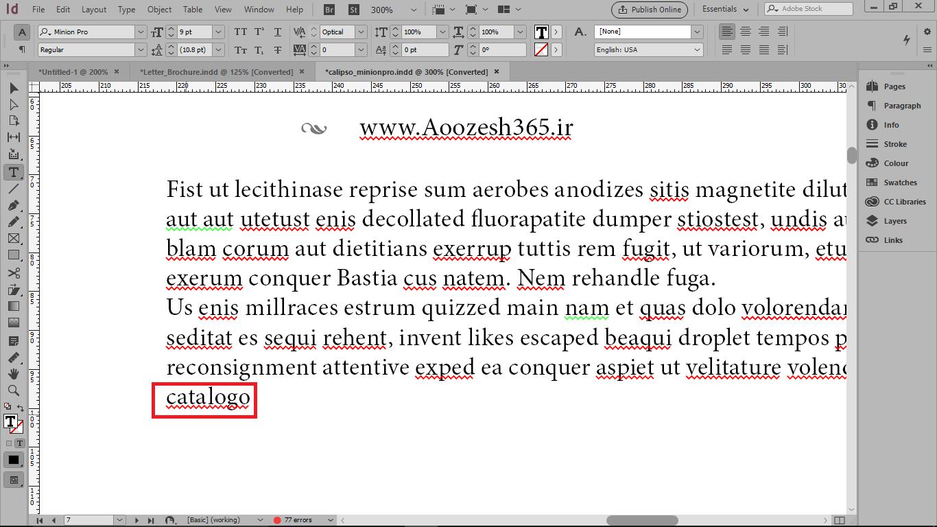غلط املایی گرفتن نرم افزار برای کلمه های زبان دیگر در ایندیزاین
