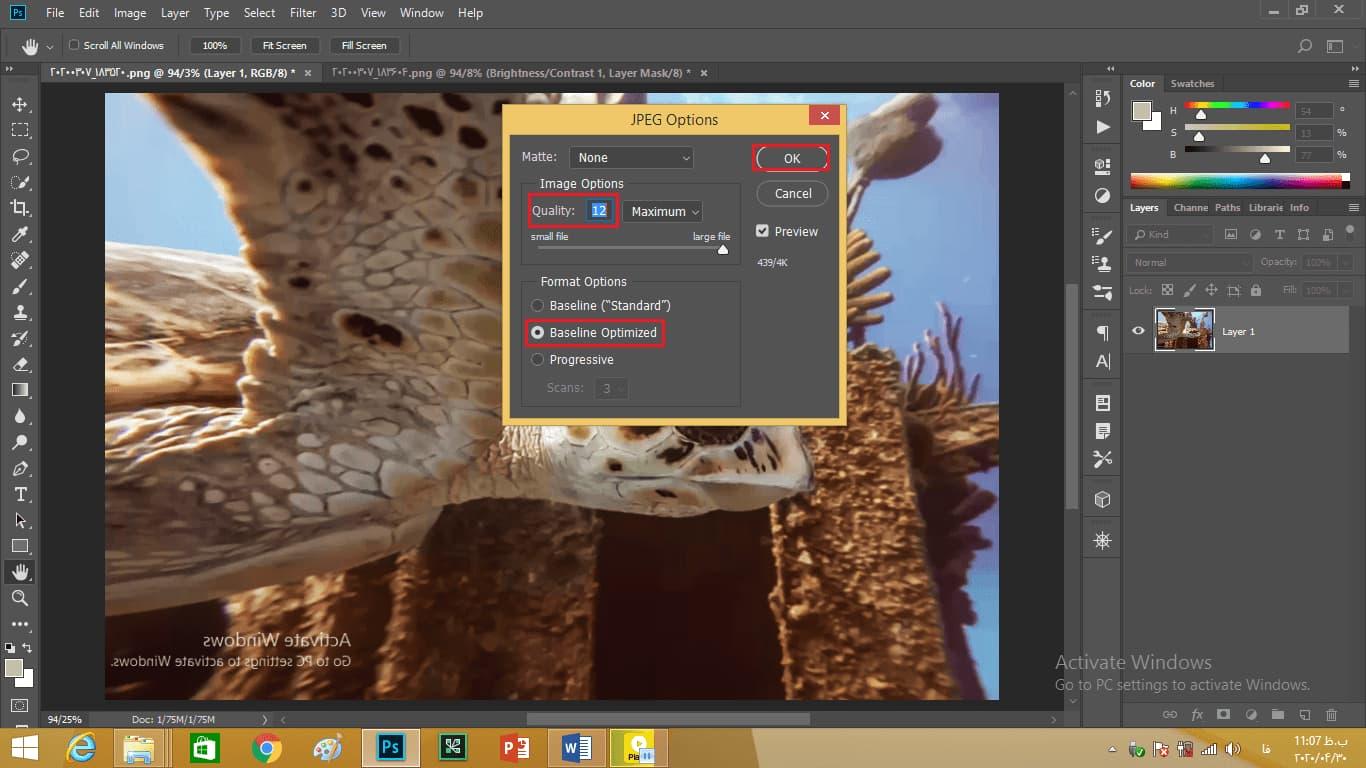 تعیین گزینه ها و مقادار quality در کادر JPEG option