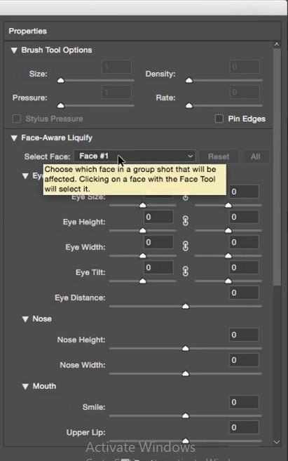 انتخاب چهره با گزینه select face در فتوشاپ در آموزش روتوش پرتره